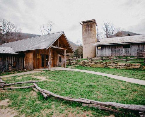 Hickory Nut Gap Farm | Grassfed Meats and Farm Activities