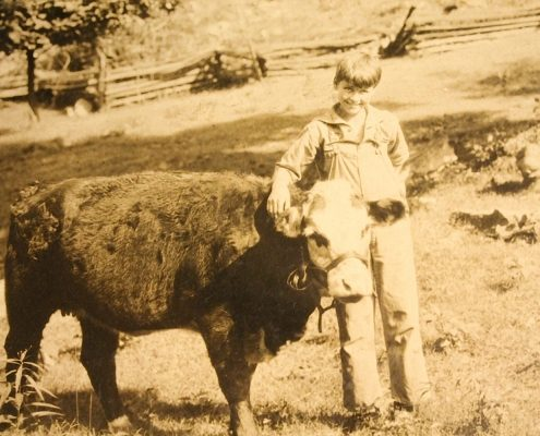 james clarke old photo of boy and cow